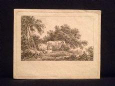 Martin Van Molitor, Mucche al pascolo, incisione originale