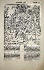 La cacciata dall'Eden - Hartmann Schedel 1493