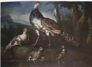 Angelo Maria Crivelli detto il Crivellone (?-1730)