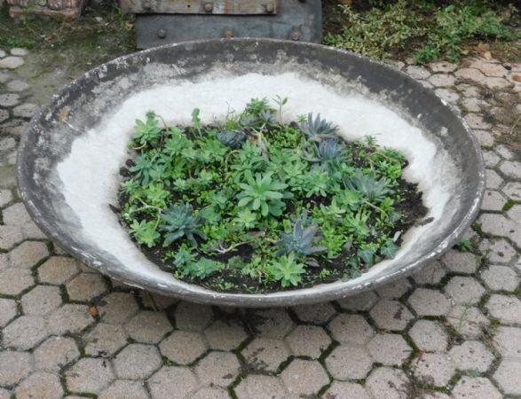 dars292  vasi in cemento varie misure, anni '60