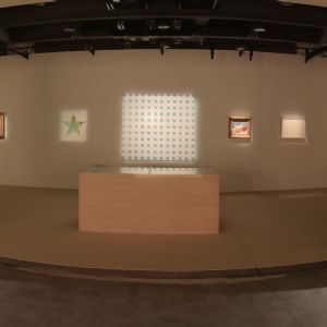 Butterfly Institute Fine Art