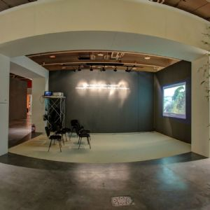 Paul Nicholls Studio