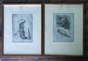 Par gravuras representando: pardal morto e lagarto verde em formalina. Autor: Nemesio Orsatti.Ferrara 1912-1988
