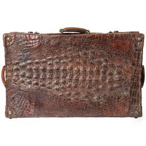 Krokodil Alter Koffer