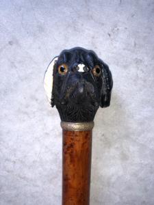 Quédate con una perilla que representa la cabeza de un perro en ébano y marfil. Canela en malaca.