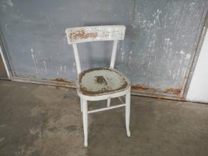 sedia anni 50 in faggio curvo