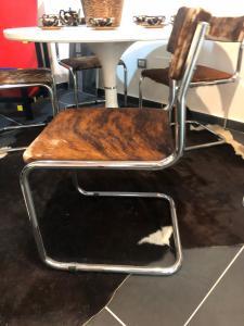 Cinque sedie in cavallino modello stile Breuer
