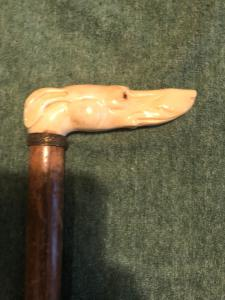 Stick with ivory handle depicting a greyhound dog head.