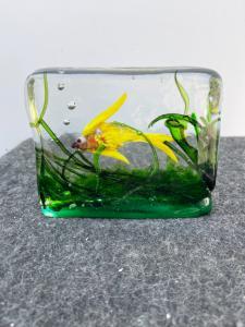 Untergetauchtes Glasaquarium. Alfredo Barbini, Murano.
