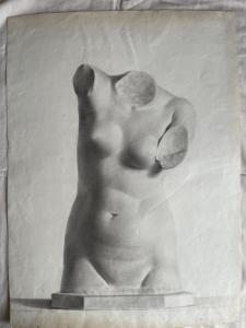 Bleistiftzeichnung auf Papier, die einen Statuentorso darstellt.