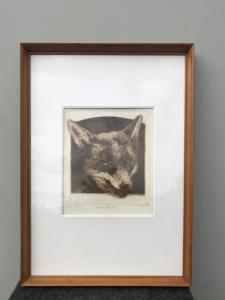 Etching with frame depicting 'fox in a trap. Pietro Pietra. (1885-1956). Bologna.