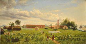 Fattoria di Gaddee in Bangala, 1876