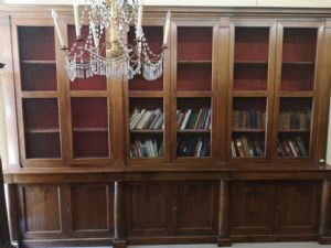 GREAT LIBRARY FROM THE 1800s