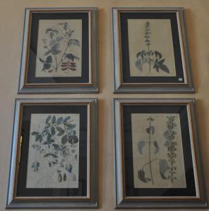 Série de quatro impressões botânicas