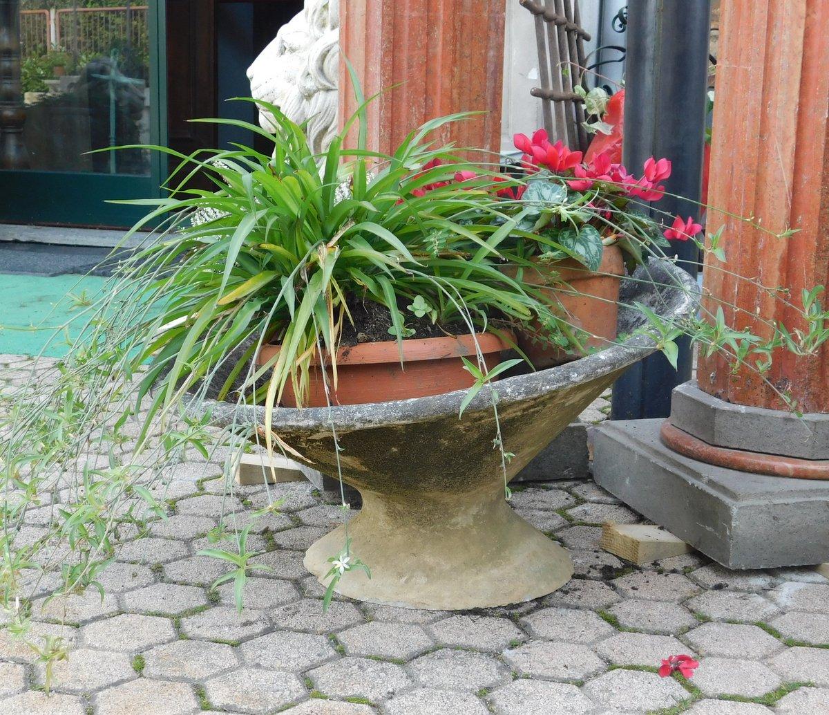 thumb2|dars292  vasi in cemento varie misure, anni '60