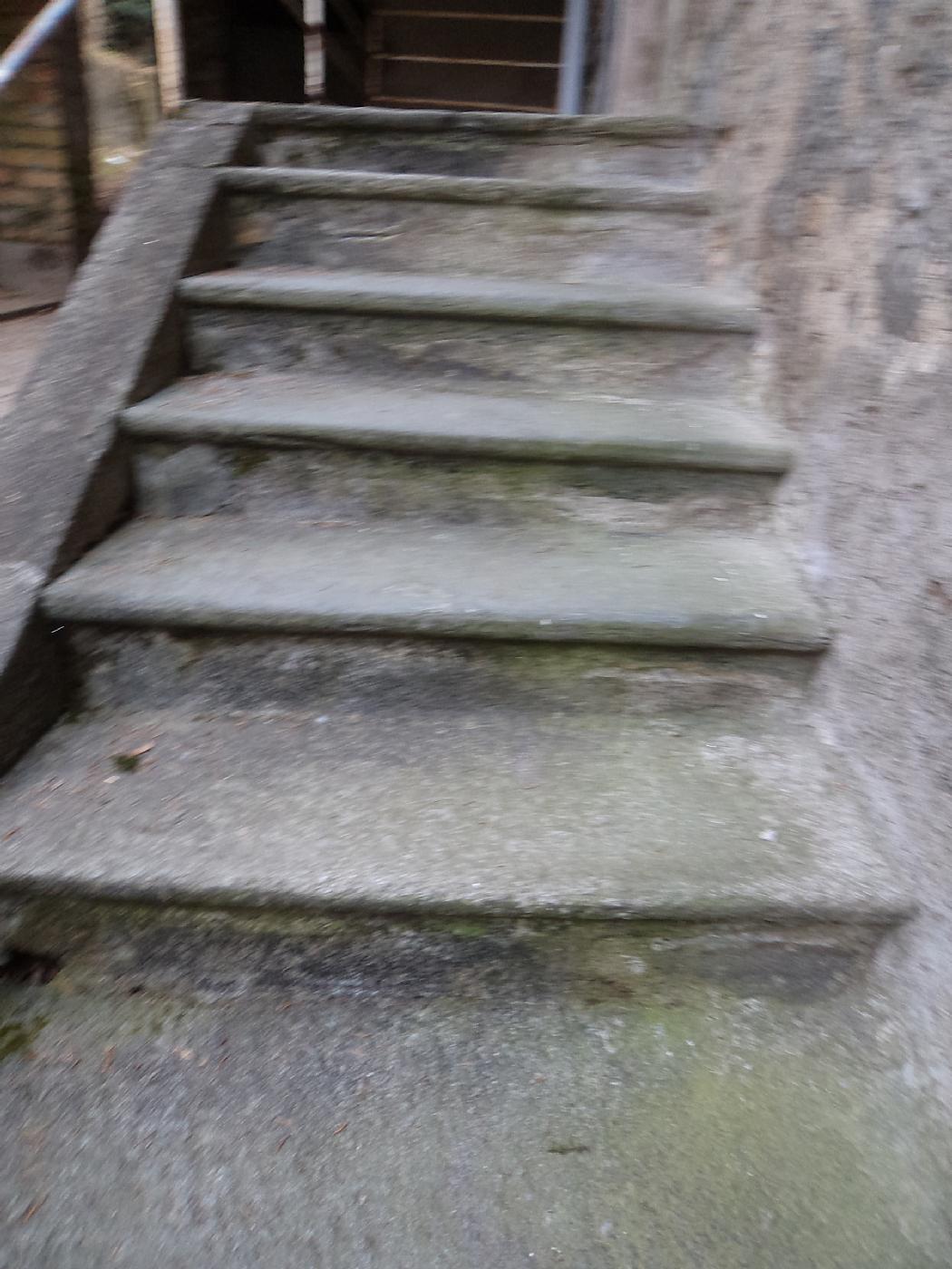 scala in pietra Lombarda con alzatina | Antiquariato su ...