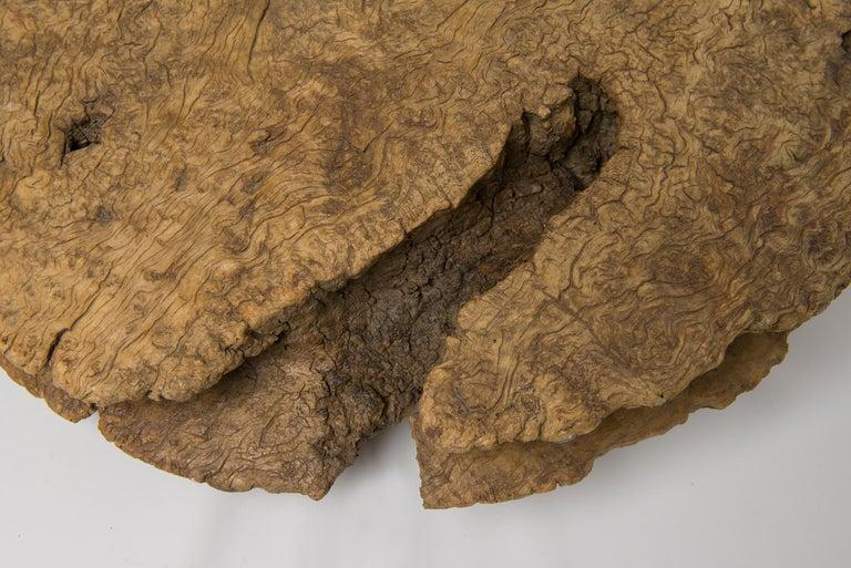 thumb4 Antica carrucola per pozzo dal deserto