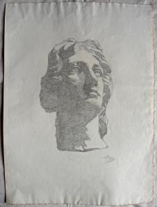 Dibujo a lápiz sobre papel que representa una cabeza de mármol de Arturo Pietra.Bologna.