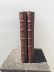 盒子里的木制书的形式覆盖着皮革,里面有步步高游戏。