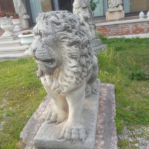 leoni in pietra