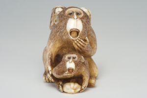 Scimmie Masatami